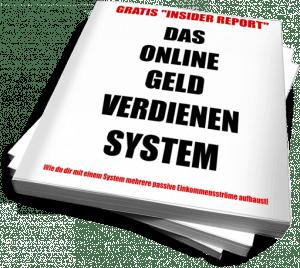 Das online geld verdienen system